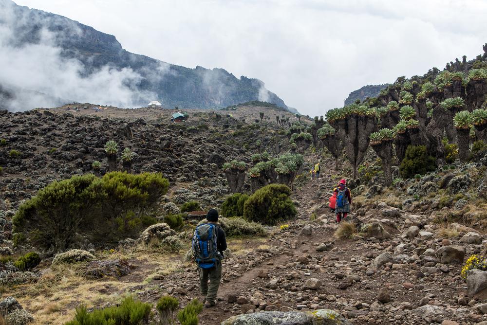 kilimanjaro_shutterstock_377507902